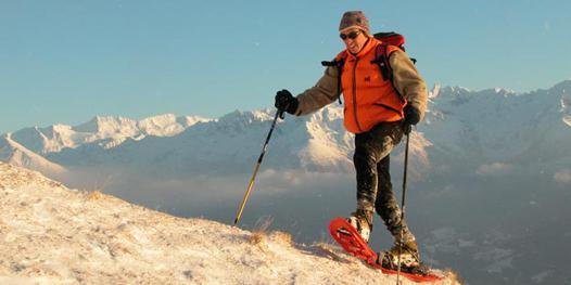 raquette ski