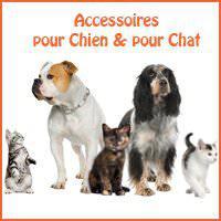 accessoires chiens et chats