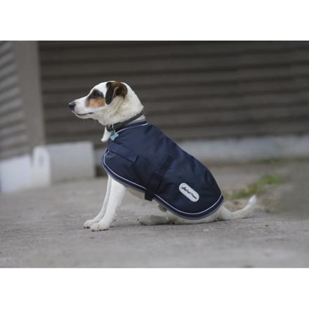 couverture chien