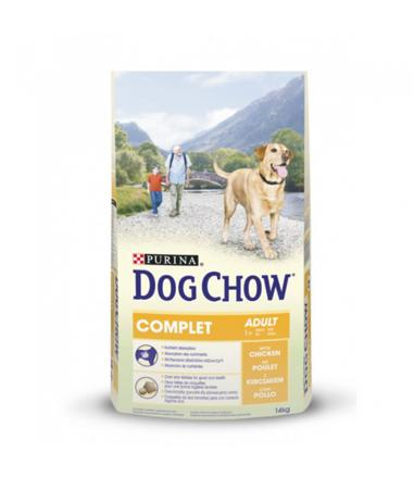 croquette dog show