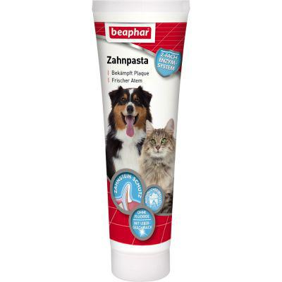 dentifrice pour chat