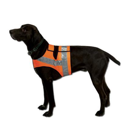 gilet securite pour chien