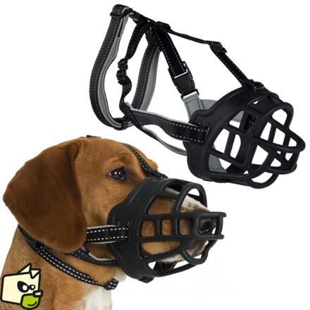 muselière chien