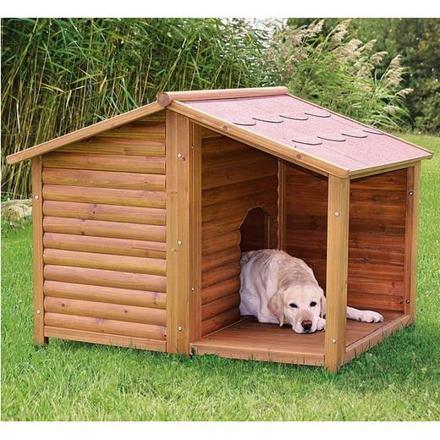 niche chien exterieur
