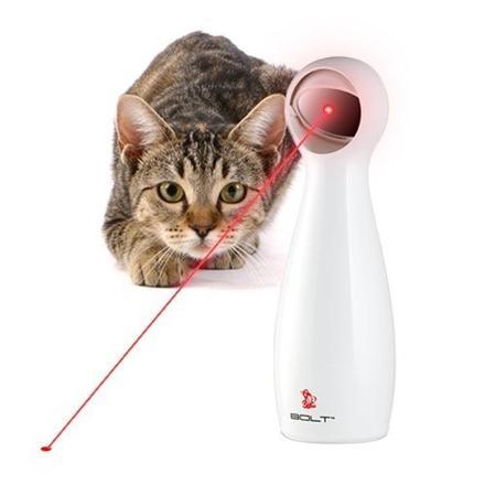 pointeur laser pour chat
