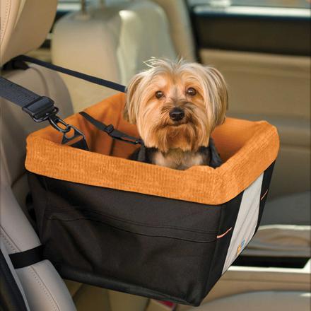 siege auto chien